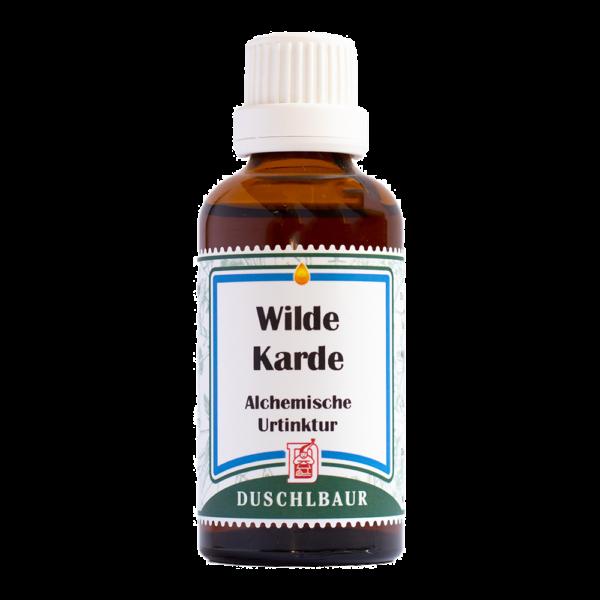 Wilde Karde Tinktur Essenz Kraeutertropfen Borreliose Immunsystem Heilmittel